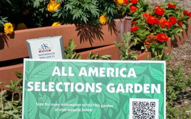 "Honorable Mention: ""Great Use of AAS Signage"": Southwest Indiana Master Gardener Demonstration Gardens, Evansville, Indiana - All-America Selections 2019 Display Garden Challenge"