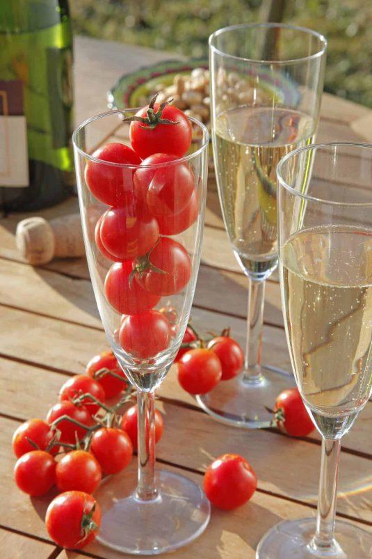 Tomato Crokine - 2020 AAS Edible - Vegetable Winners