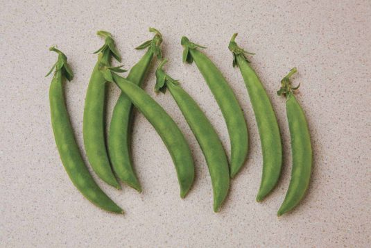 Stringless, edible pods are perfect for healthy, garden fresh snacking, stir-frying, or freezing for later.