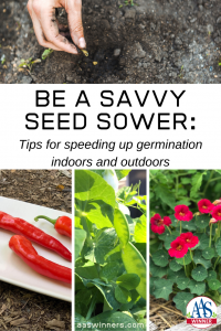 Be a Savvy Seed Sower: Tips for speeding up germination indoors and outdoors - All-America Selections