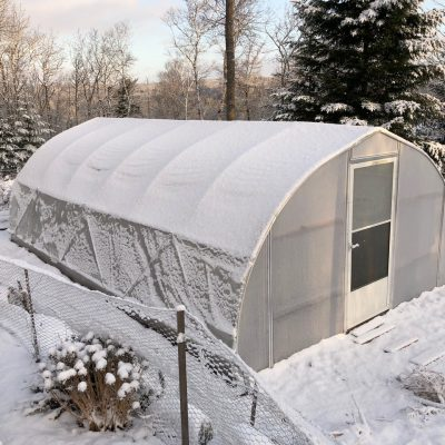 Using a Polytunnel for fall and winter gardening