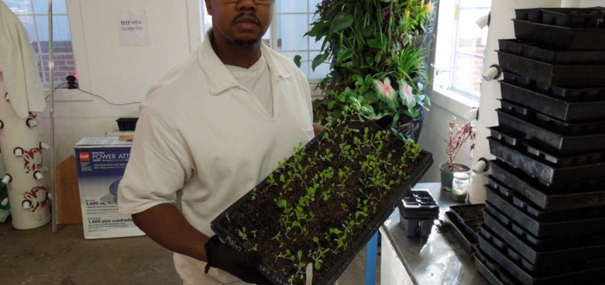 First Place Winner (tie): Lee College Horticulture Program, Huntsville, Texas