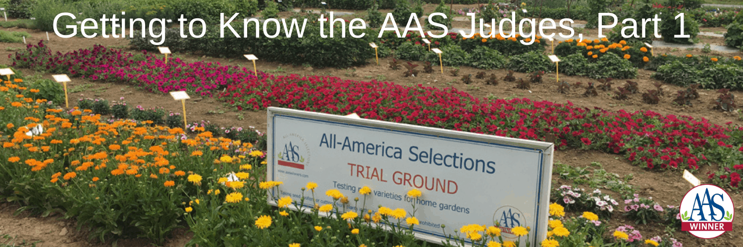 Getting to know the AAS Judges, Part 1 - All-America Selections