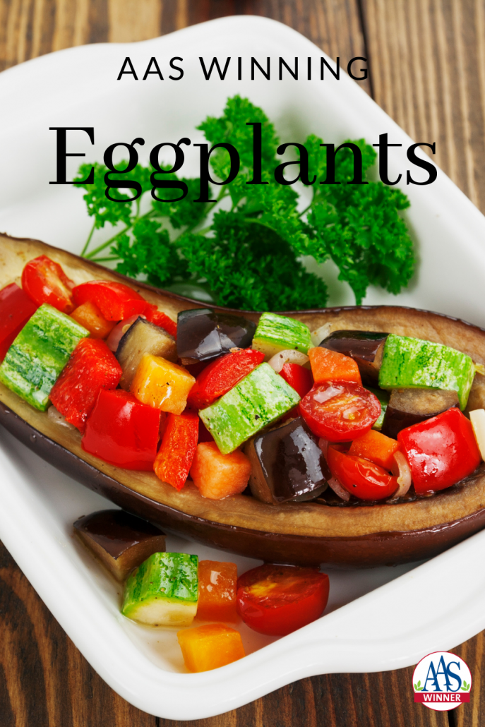 4 different AAS Winning Eggplants to plant in your garden or containers - All-America Selections - All-American Selections