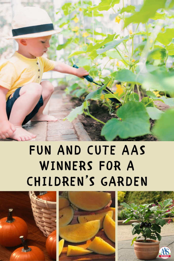 Fun and Cute AAS Winners - perfect for any children's garden - All-America Selections
