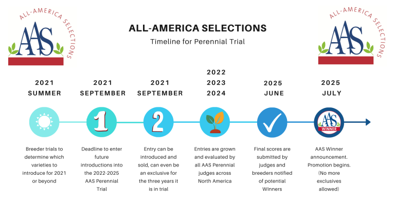 Perennial Trial Timeline graphic
